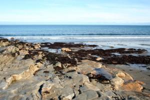 Скалистый берег
