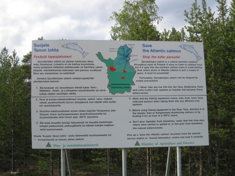 Плакат с мерами по защите от рыбьих паразитов