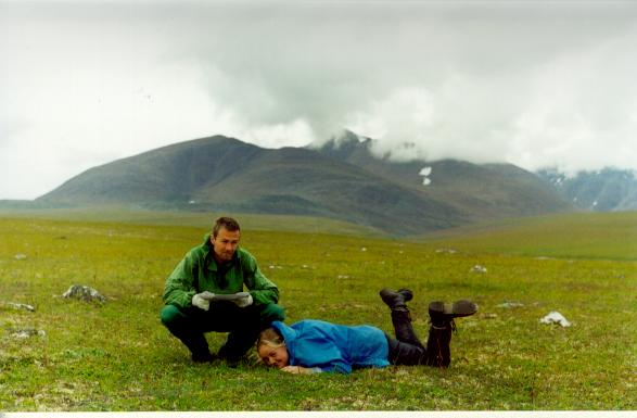 Polar Ural, 2001