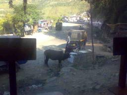 Outlook from dhaba in Rampur